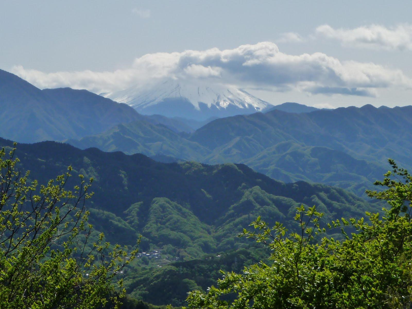 Fuji_from_Takao_1