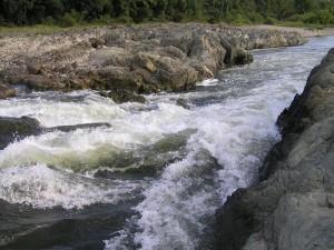 加古川万歳橋下流の瀬P9170106